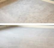 Чистка офисного ковролина